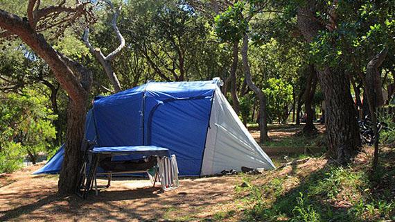Emplacement Tente Caravane Camping Car Au Camping Presqule De Giens