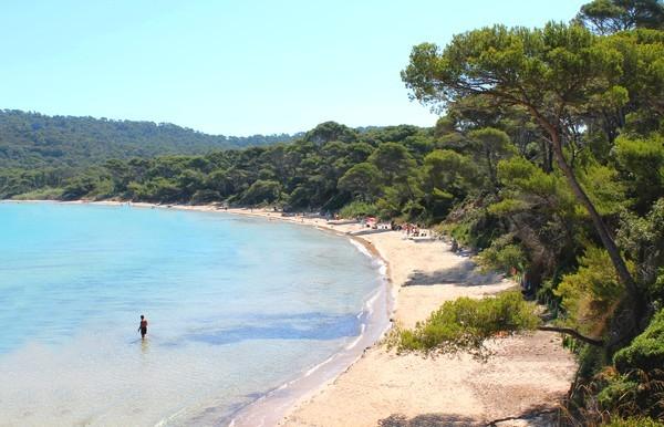La plage Notre Dame de Porquerolles est bordée de magnifiques pins. Sable fin et eau turquoise complètent le tableau. Une des plus belles plages d'Europe ! Visitez cette grande plage avec Vacances Giens, campings sur la Presqu'île de Giens.